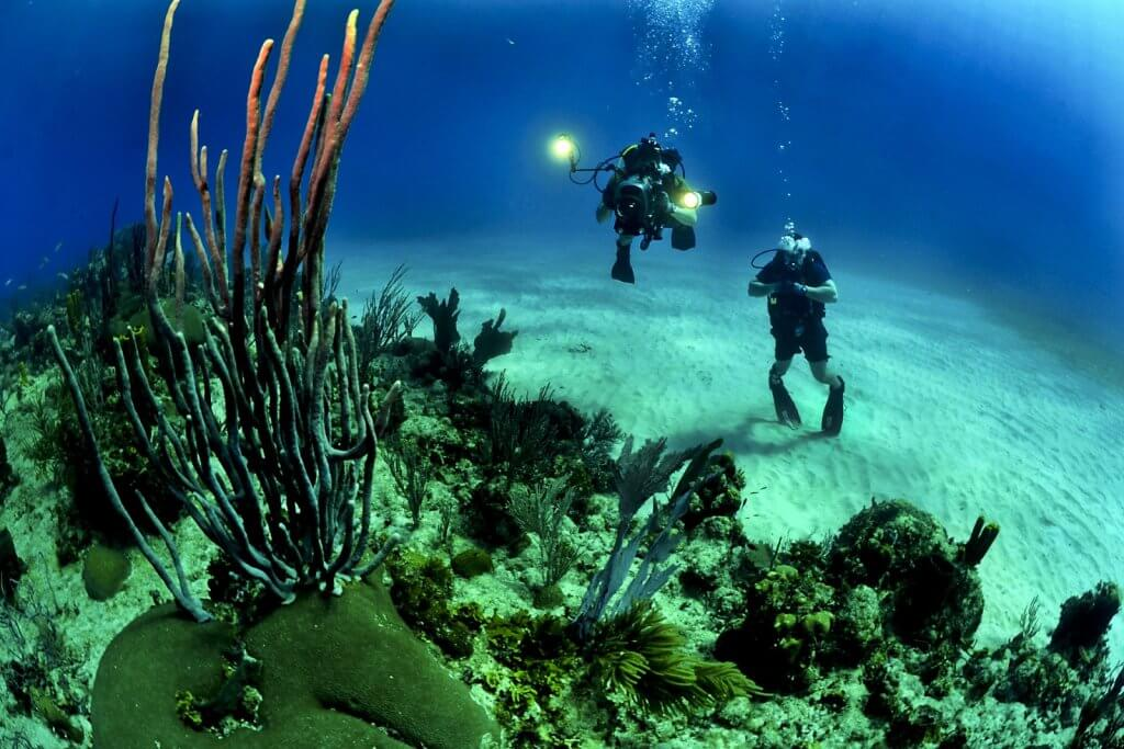 подводное плавание диалог